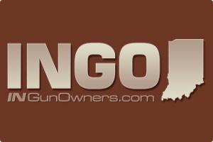 ingo_logo